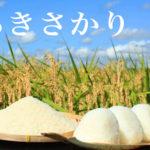 広島県産米『あきさかり』味や特徴と口コミ・評判は?買うならどこ?