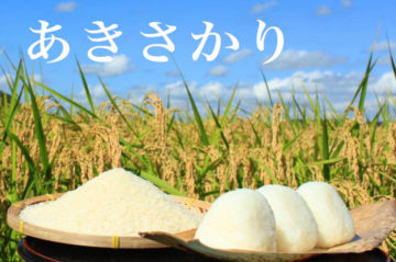 akisakari