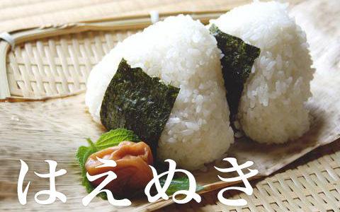 山形県のお米『はえぬき』の味や特徴は?おすすめの通販は?