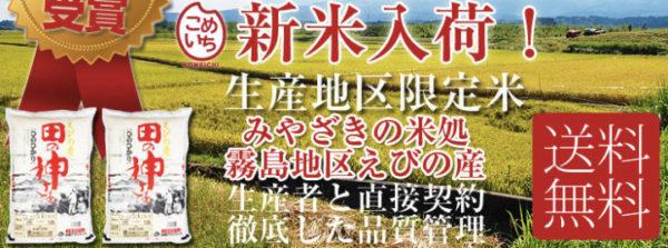 komeichi_top